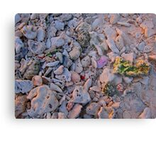 Coloured Rocks Metal Print