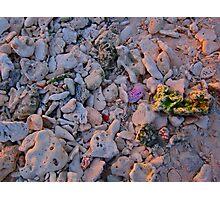 Coloured Rocks Photographic Print