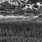 Ghostly Landscape in grey by JamesA1