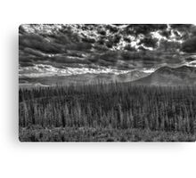 Ghostly Landscape in grey Canvas Print