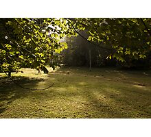 Kangaroo Valley - Early Morning Sun Photographic Print