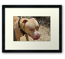 Perfect Pit Framed Print