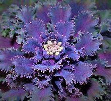 Leafy purple by ♥⊱ B. Randi Bailey