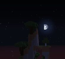 Minecraft Night Landscape by qwertyness