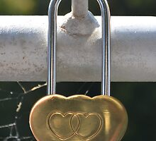 Love Locked by candysfamily