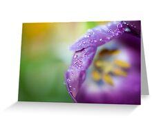 Tulip 1345 Greeting Card