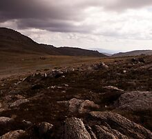 Kosciuszko - Path To The Summit - View 02 by Timothy Kenyon
