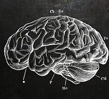 Brain Engraving by jackshoegazer