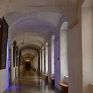 Stift (Abbey) of Melk - Austria by Arie Koene