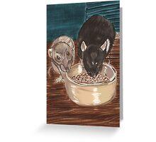 Rats and bowl. Greeting Card