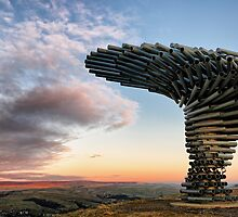 Singing Ringing Tree by Mark Sykes