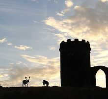 Old John at Bradgate park by shootingnelly