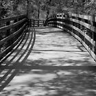 Trail Shadows - B&W by ctheworld
