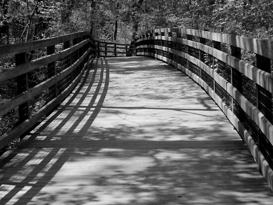 Trail Shadows - B&W by ctheworld