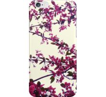 Blossom Flower Phone Case iPhone Case/Skin