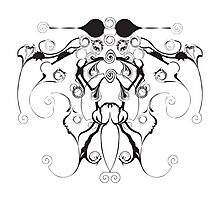 Moth Swirls And Twirls Photographic Print