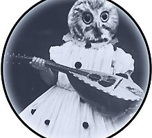 Musical Owl by Rob Cox