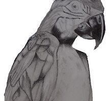 Parrot by textilestalk