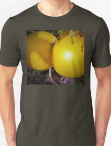 Upcoming harvest Unisex T-Shirt