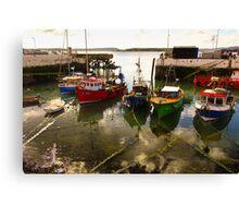 Irish dock Canvas Print