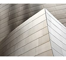 Disney Concert Hall Architecture I Photographic Print