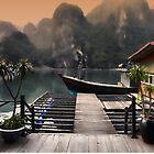 Halong Bay by Brendan Buckley