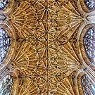 Fan Vaulted Ceiling by Vicki Field
