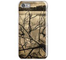 Sepia iPhone Case/Skin