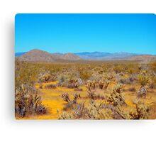 Anza Borrego Desert in Bloom Canvas Print