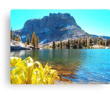 Upper Yosemite National Park Canvas Print
