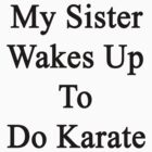 My Sister Wakes Up To Do Karate  by supernova23