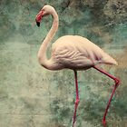pink flamingo by lucyliu