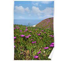 Springtime in Half Moon Bay Poster