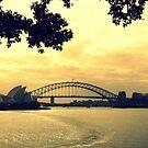 Sunset Sydney by PerkyBeans