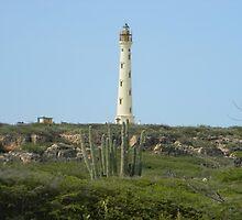 California Lighthouse, Aruba by bsauvey