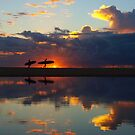 surfer silhouettes I by geophotographic