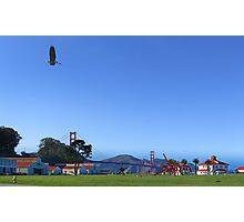 Blue Heron Blue Sky Crissy Field  Photographic Print