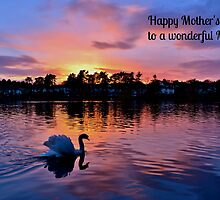 Swan at Sunset Mother's Day Card - Wonderful Mum by Paula J James