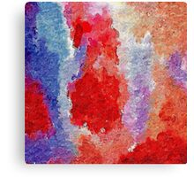 The coloured Rorschach-esque Canvas Print