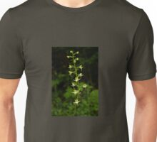 The surprising beauty of Greater Butterfly-orchid Unisex T-Shirt