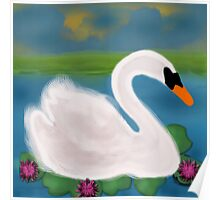 White Swan in Pond Poster