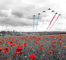 Red Arrows Tribute Selective by J Biggadike