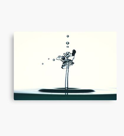 Fluidart water drop images Canvas Print