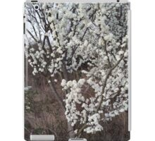 Blossoming Tree IPad Case iPad Case/Skin