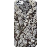 Blossoming Tree Phone Case iPhone Case/Skin