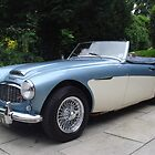 Austin Healey by John Maxwell