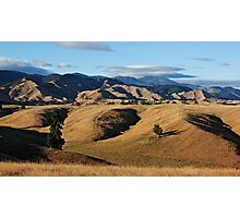 Gold in the valley Photographic Print