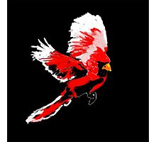 Painted Cardinal Design Photographic Print