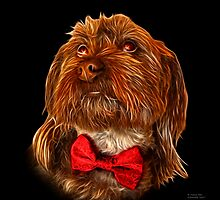 Schnoodle Dog Pop Art 3687 - BB by Rateitart