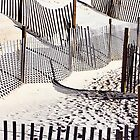 Beach Fences and Shadows by Elizabeth Thomas